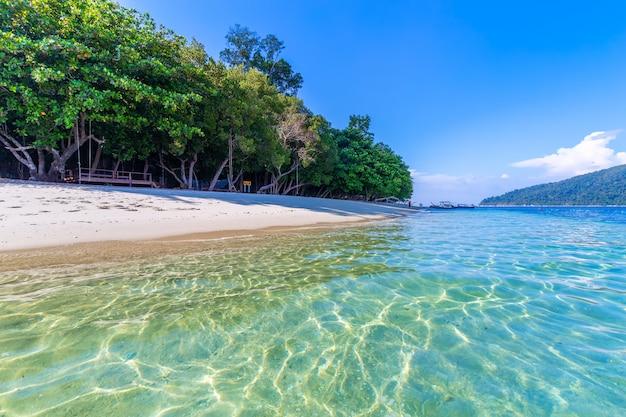 Piękna biała piasek plaża z drzewem przy tropikalnym morzem w lipe wyspie thailand