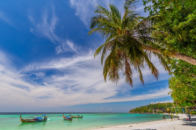 Piękna biała piasek plaża z drzewkami palmowymi w lipe wyspie, thailand