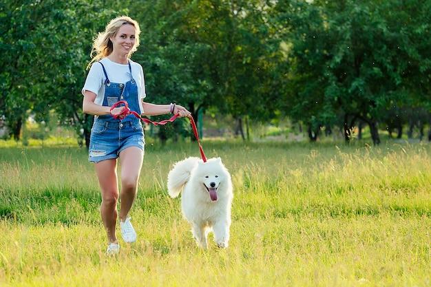 Piękna blondynka kręcone uśmiechnięta szczęśliwa młoda kobieta w dżinsowych szortach trening i bieganie z białym puszystym ślicznym samoyed psem w letnim parku promienie słońca w tle pola. zwierzak i gospodyni