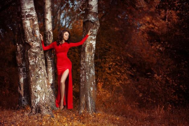 Piękna brunetki kobieta pozuje w luksusowej długiej czerwieni sukni pozyci w jesieni brzozy lesie.