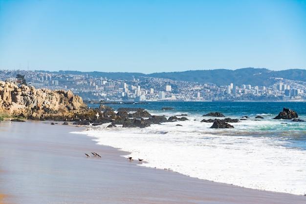 Piękna chilijska plaża w gminie papudo