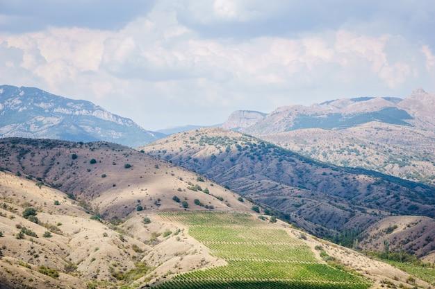 Piękna cicha przyroda, porośnięte roślinnością wzgórza, szczyty górskie i błękitne niebo
