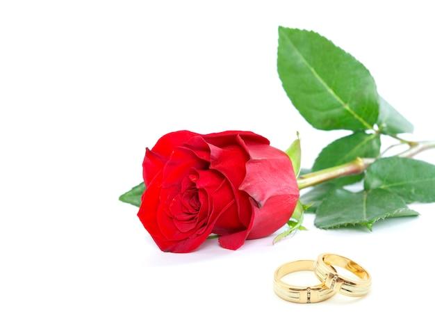 Piękna czerwona róża z obrączkami ślubnymi