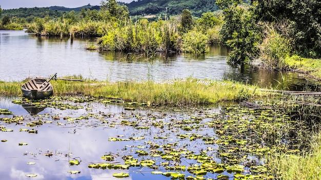 Piękna długa droga na wzgórzu wśród lasów tropikalnych w parku narodowym khao yai, tajlandia