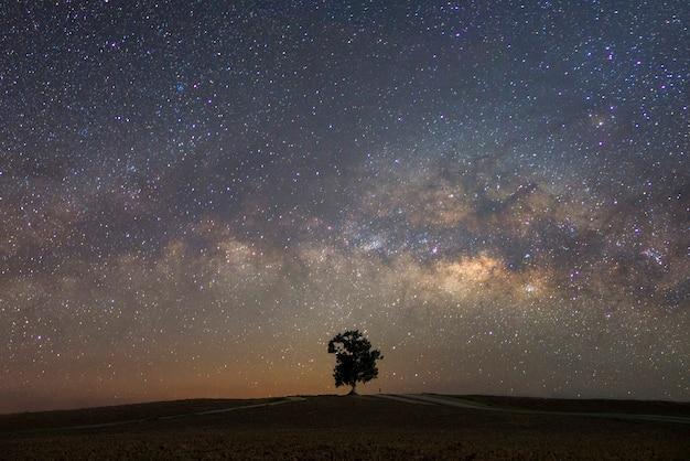 Piękna droga mleczna z pojedynczym drzewem. krajobraz z nocnym gwiaździstym niebem i drzewem na wzgórzu