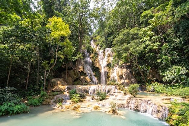 Piękna duża siklawa płynie między skałami w głębokim - zielony las.
