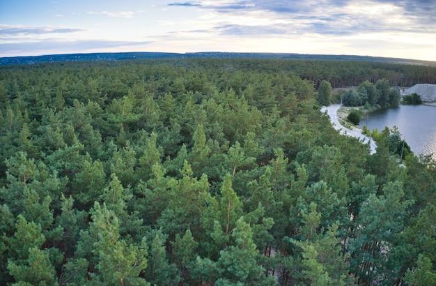 Piękna duża wioska, wokół której znajduje się duży zielony las świerkowy