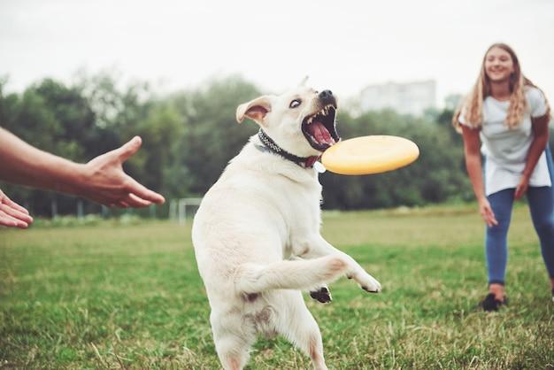 Piękna dziewczyna bawi się z ukochanym psem w parku.