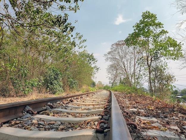 Piękna fotografia tory kolejowi w lesie