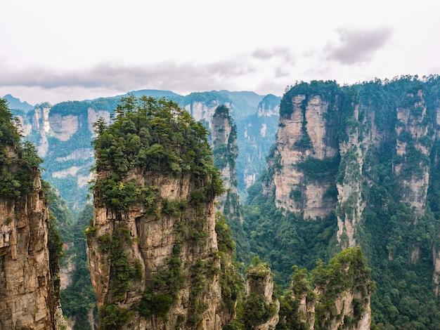 Piękna górska dolina yuanjiajie lub góra avartar w parku narodowym zhangjiajie