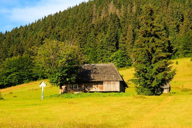 Piękna górska sceneria, karpaty, wioska w górach.