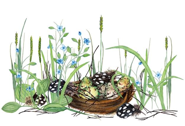 Piękna ilustracja realistyczne jaja przepiórcze w gnieździe z suchymi gałęziami, piórami, świeżą trawą i kwiatami. akwarela ilustracja