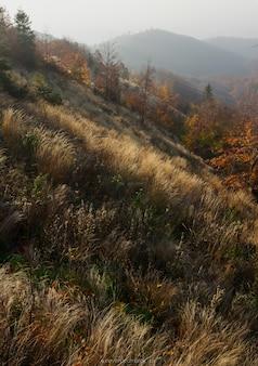 Piękna jesień w górach medvednica w zagrzebiu, chorwacja