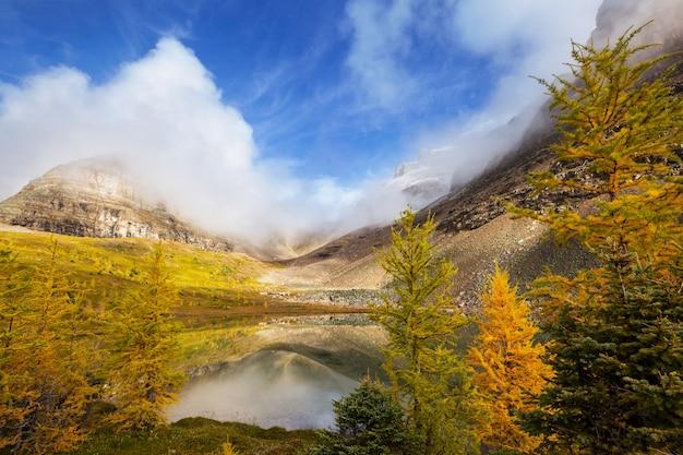 Piękna jesień w kanadyjskich górach. tło upadku.