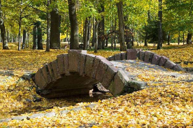 Piękna jesień w parku miejskim. most łukowy z żółtymi liśćmi. kolorowe klony. piękno natury scena przy sezonem jesiennym.