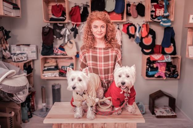 Piękna kędzierzawa kobieta. piękna kręcona kobieta z mosiężnymi włosami stojąca obok uroczych psów w ubraniach