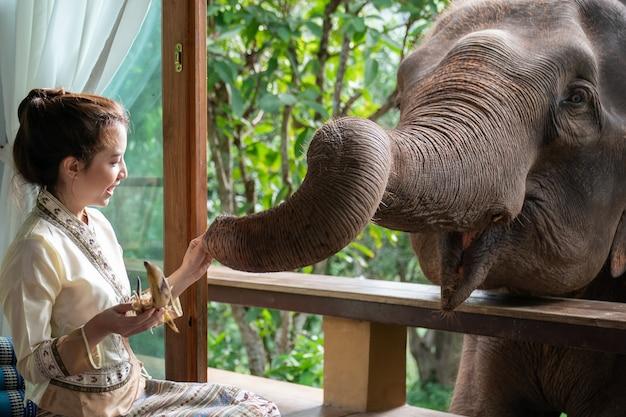 Piękna kobieta asia siedzieć na drewnianym balkonie i karmić słonia.