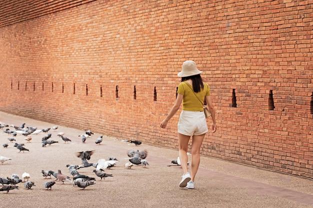 Piękna kobieta bawi się ptakami w parku. at tha phae gate stare miasto chiang mai starożytny mur i fosa w północnej tajlandii chiang mai.
