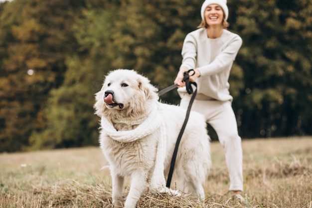 Piękna kobieta chodzi jej psa w polu out