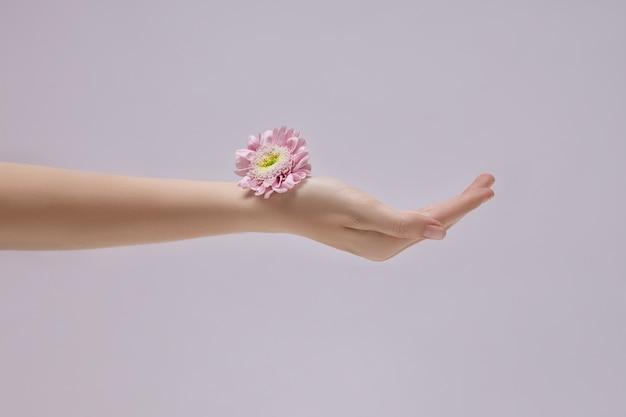 Piękna kobieta z różowe kwiaty w dłoni. naturalny kosmetyk do pielęgnacji skóry dłoni. nawilżenie dłoni