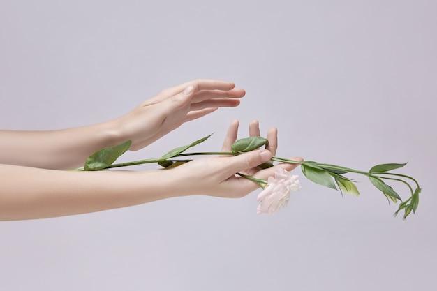 Piękna kobieta z różowe kwiaty w dłoni. naturalny kosmetyk do pielęgnacji skóry dłoni.