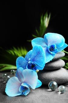 Piękna kompozycja spa z niebieską orchideą i kamieniami