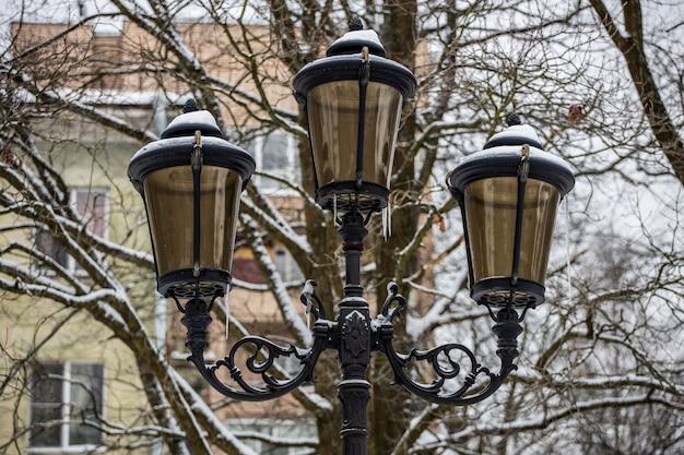 Piękna latarnia uliczna w parku w zimie. zdjęcie wysokiej jakości