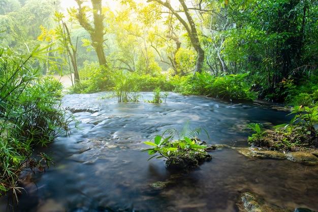Piękna mała siklawa w głębokim lesie w tajlandia.