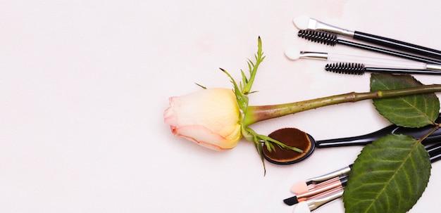 Piękna menchii róża z muśnięciami na barwionym tle