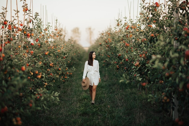 Piękna młoda brunetka w białej sukni spaceruje po ogrodzie jabłkowym jesienią.