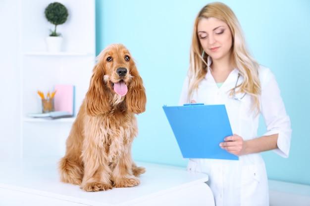 Piękna młoda kobieta lekarza weterynarii z psem w klinice