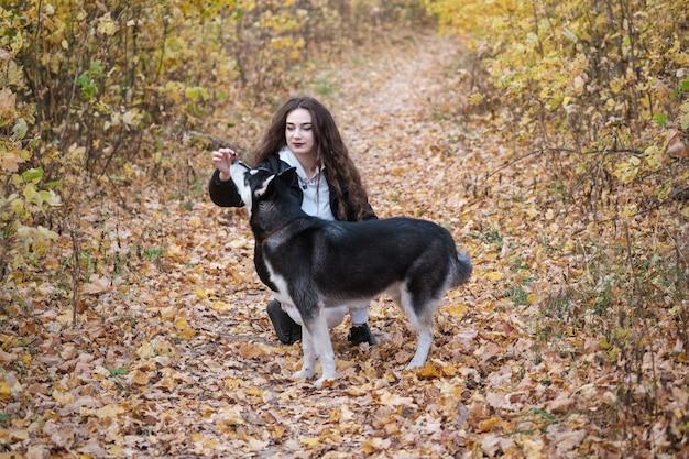 Piękna młoda kobieta spacery z psem husky syberyjski w pięknym jesiennym parku z żółtymi liśćmi