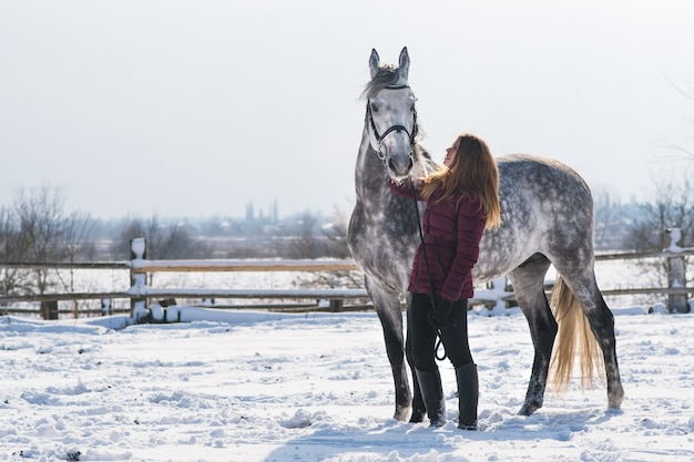 Piękna młoda kobieta z koniem na naturze zimą na śniegu