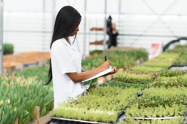 Piękna młoda uśmiechnięta dziewczyna afroamerykanów, pracownik z kwiatami w szklarni.