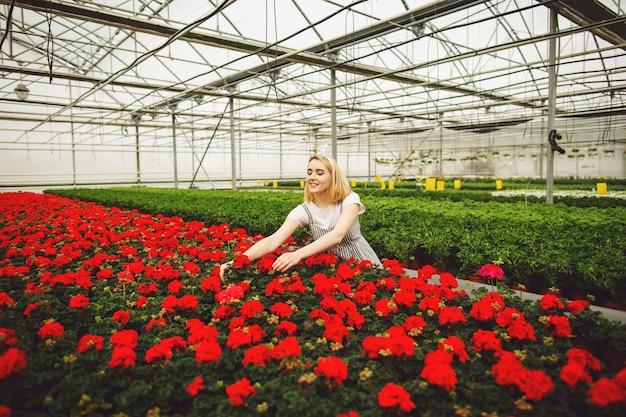 Piękna młoda uśmiechnięta dziewczyna, pracownik z kwiatami w szklarni
