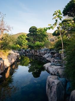 Piękna natura. jezioro i zielone drzewa z górami w tyle