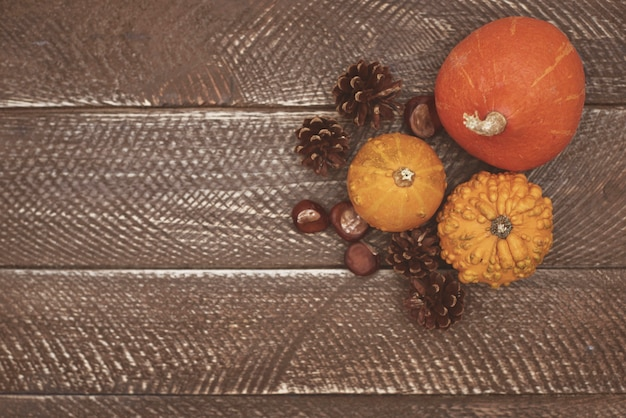 Piękna naturalna kompozycja na drewnianym stole