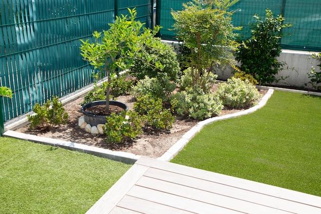 Piękna naturalna roślina strefy relaksu w nowoczesnym stylu ogrodowym