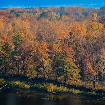 Piękna panorama jesiennego lasu, na górskich wzgórzach.
