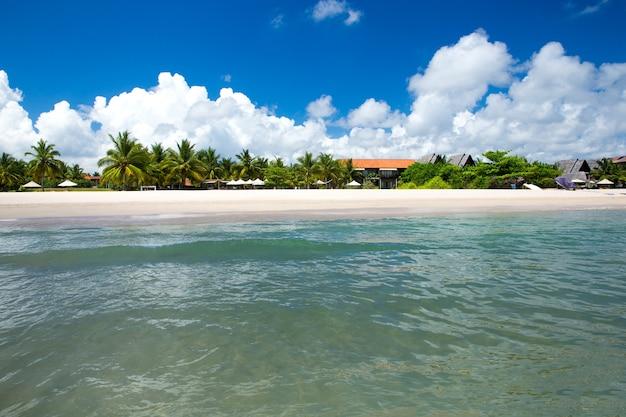 Piękna plaża i tropikalne morze?