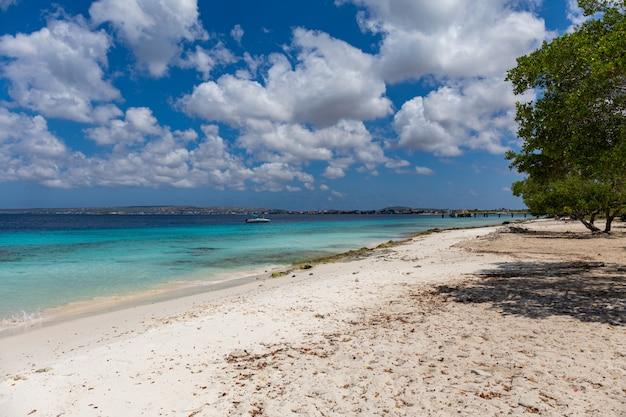 Piękna plaża idealna na spędzenie relaksujących letnich popołudni na bonaire na karaibach