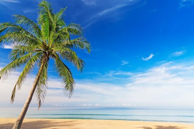 Piękna plaża karon w phuket, tajlandia. azja