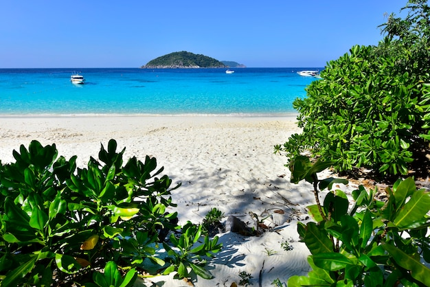 Piękna plaża koh miang wyspa nr 4 w parku narodowym mu ko similan, phang nga, tajlandia