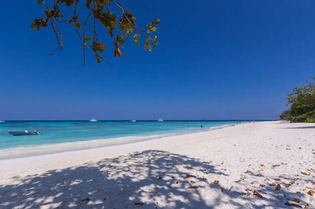 Piękna plaża z łodzią