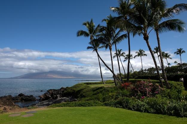 Piękna plaża z palmami i niebem. letnie wakacje podróż wakacje koncepcja tło. hawajska rajska plaża. luksusowe podróże letnie wakacje tło.