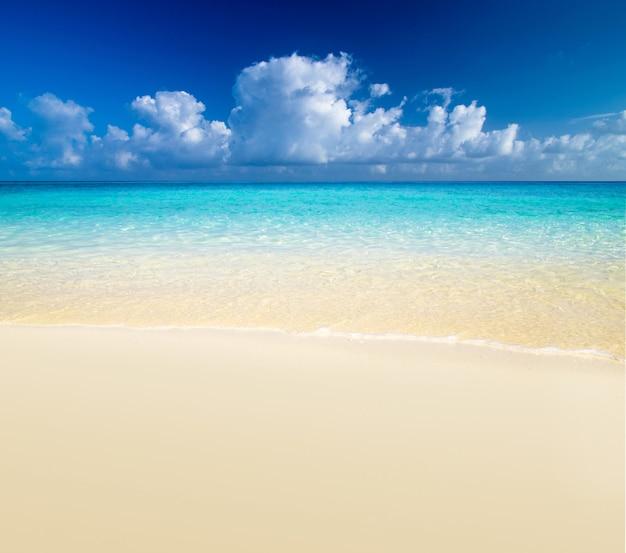 Piękna plaża z przejrzystym morzem. widok horyzontu