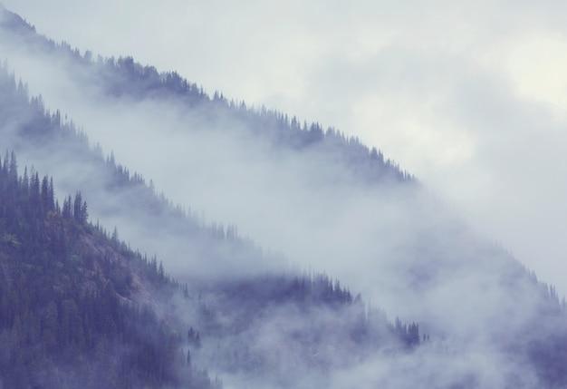 Piękna poranna scena w górach. mgła o wschodzie słońca.