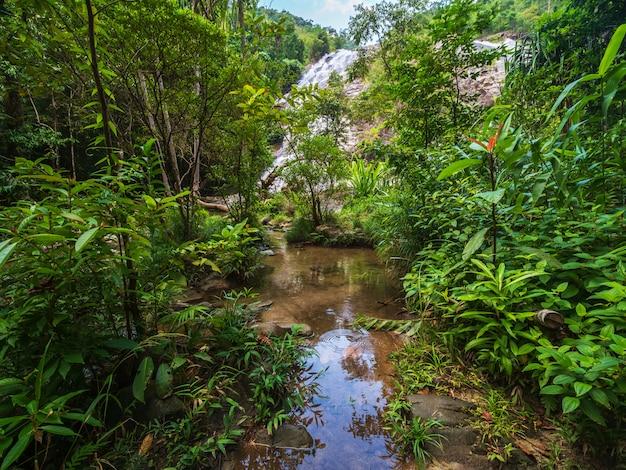 Piękna przyroda wodospad