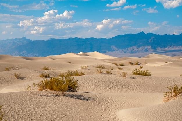 Piękna pustynia w letnie popołudnie w dolinie śmierci w kalifornii. stany zjednoczone