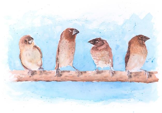 Piękna, ręcznie malowana akwarela ptaki stały na gałęziach w szeregu.